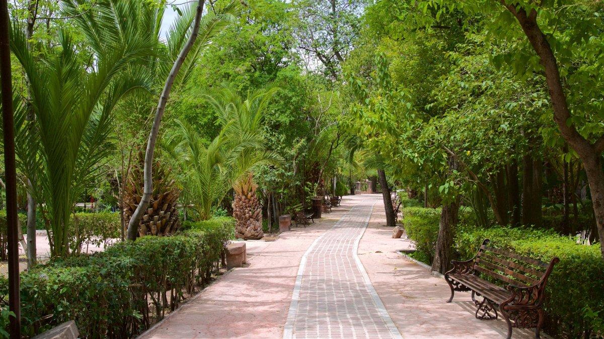 201398-juarez-park.jpg?w=1200